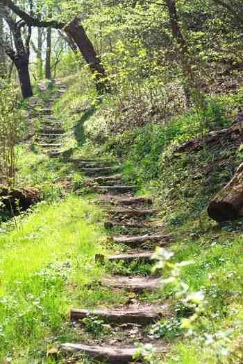 Footpath in Šárka Valley © Sybille Yates