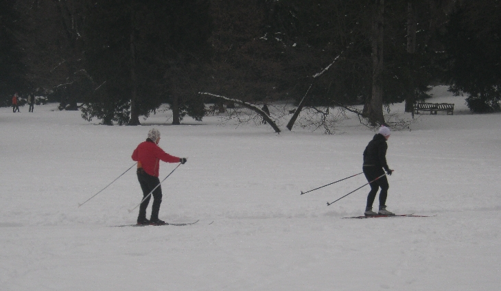 Cross-Country skiing in Stromovka Park © Ricky Yates