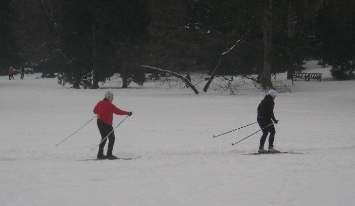 Cross-Country skiing in Stromovka Park © Ricky Yates