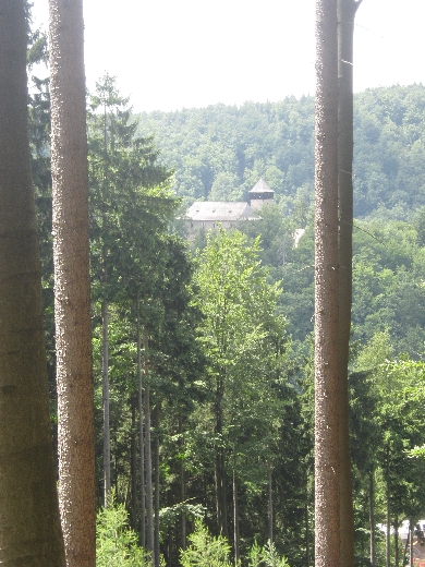 Litice Castle from the forest across the valley © Ricky Yates