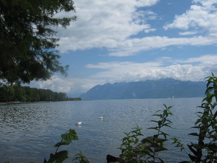 View across Lac Léman © Ricky Yates